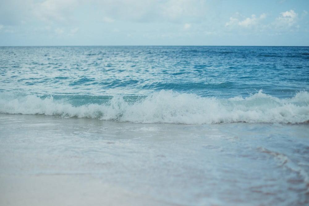 売り上げの一部がビーチクリーン活動の支援に! 「ラックス ボディソープ シャインビーチ」が期間限定で登場