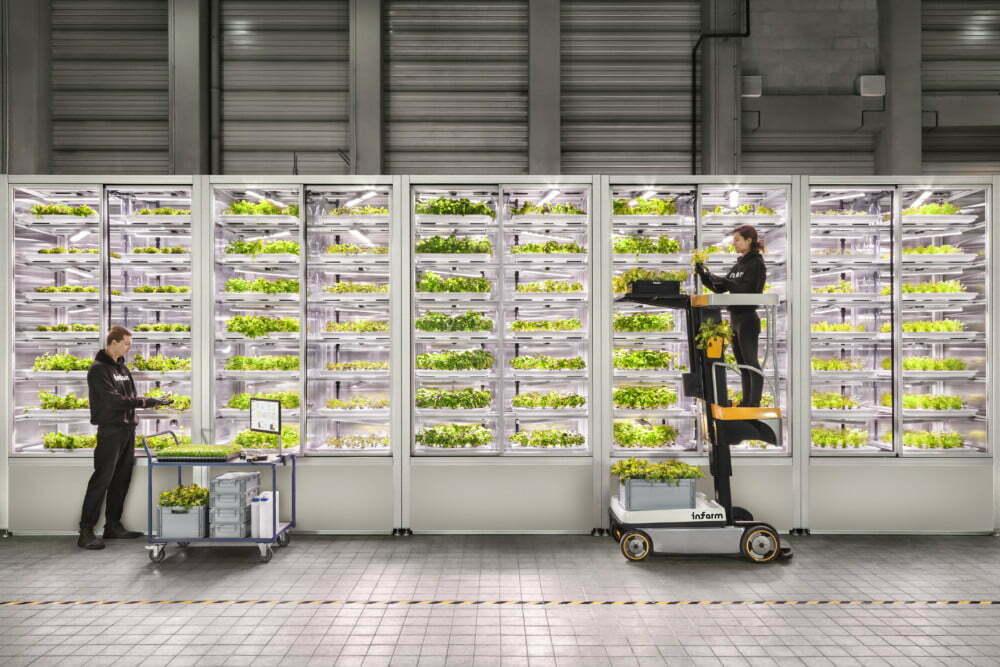 スーパーマーケットが農場に!?ベルリン発、次世代型屋内垂直農法 「Infarm(インファーム)」が日本初上陸!