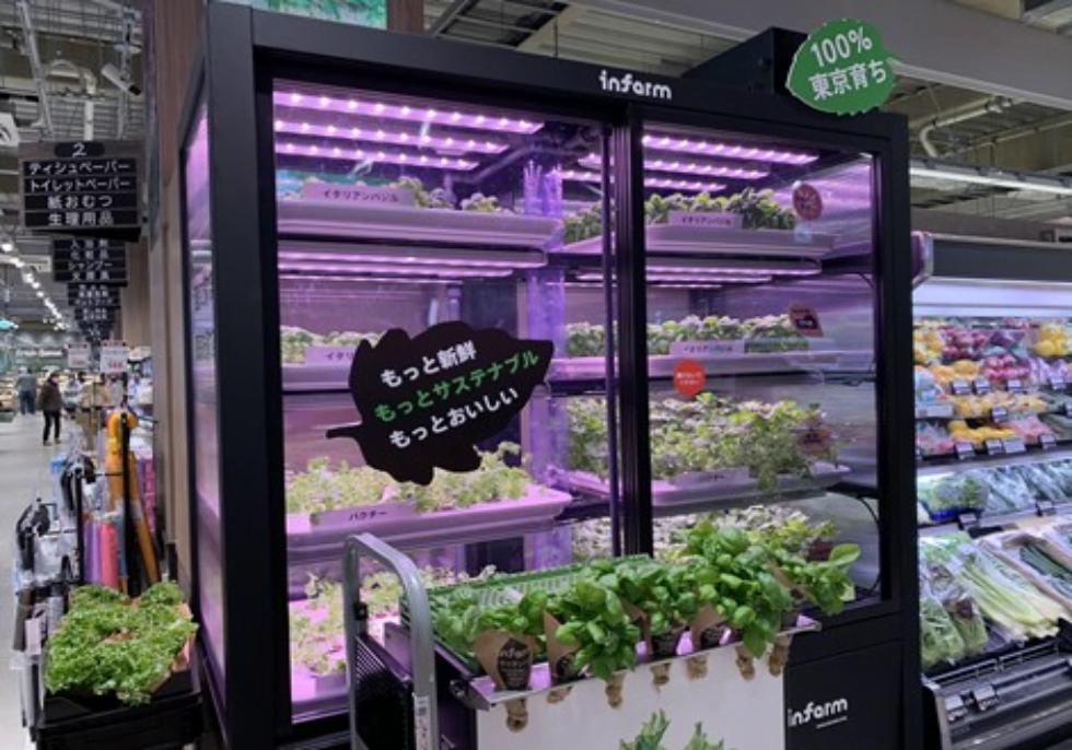 屋内で育てられるInfarm(インファーム)のハーブ・野菜がついに都内スーパーマーケットで販売開始!
